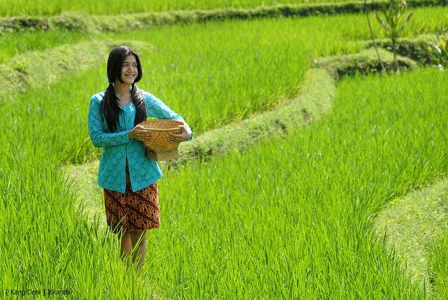 Murni Gadis Dusun