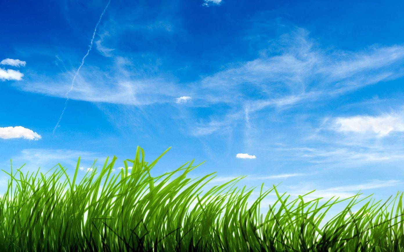 Senandung Rumput Yang bergoyang