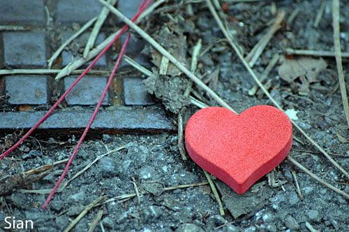 Sekeping Cinta yang Hilang