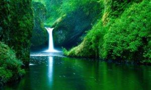 Biarkan Alam Tetap Indah
